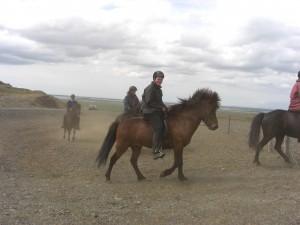 IS2006135910 - Fákur frá Kópareykjum